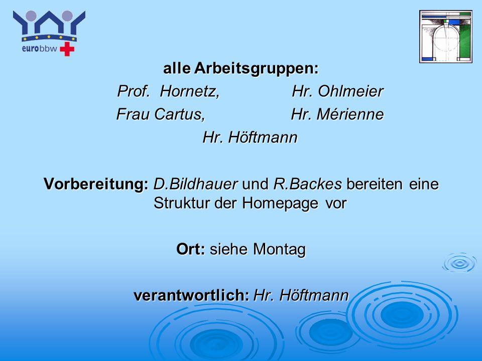 Logo 1 alle Arbeitsgruppen: Prof. Hornetz,Hr. Ohlmeier Frau Cartus,Hr. Mérienne Hr. Höftmann Vorbereitung: D.Bildhauer und R.Backes bereiten eine Stru