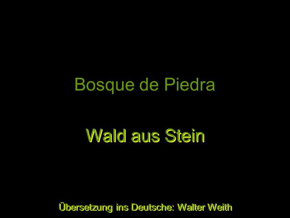 Bosque de Piedra Producto de la erosión de miles de años Wald aus Stein Wald aus Stein Übersetzung ins Deutsche: Walter Weith Übersetzung ins Deutsche: Walter Weith