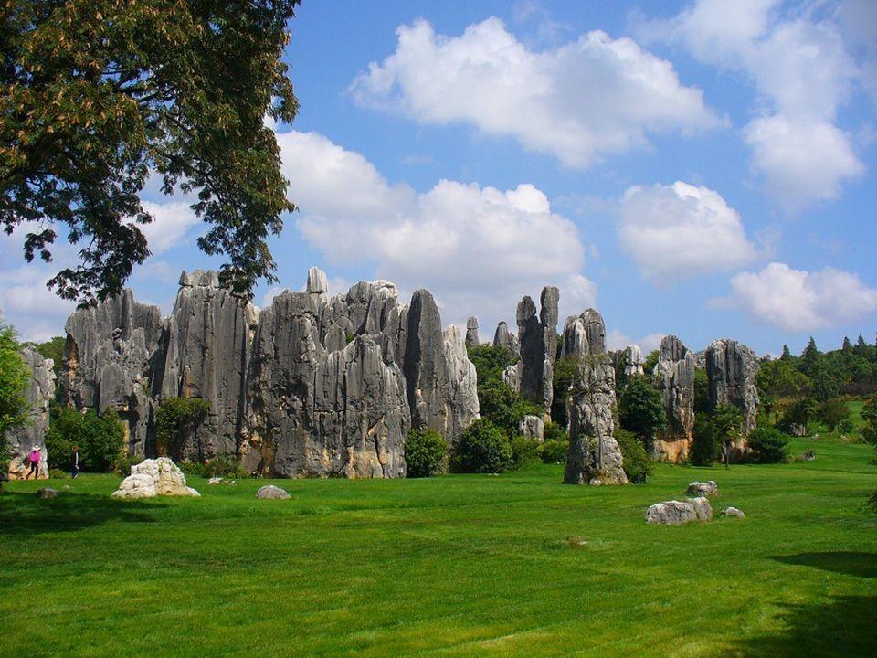 El buen gusto ha transformado parte del Bosque de Piedra en un jardín.Guter Geschmack hat einen Teil des Steinwaldes in einen Park verwandelt.