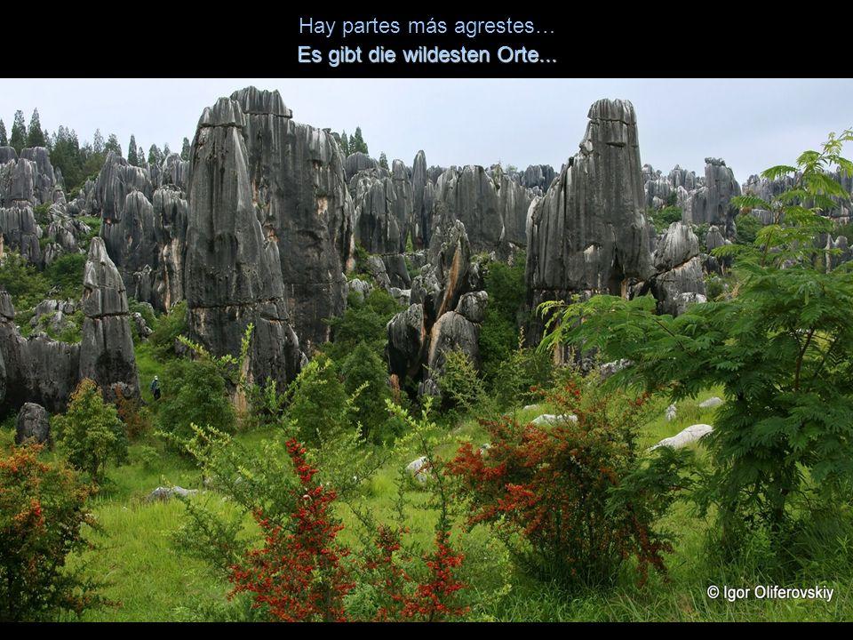 La Unesco lo ha declarado patrimonio de la Humanidad. Die Unesco hat es zum Weltkulturerbe erklärt.