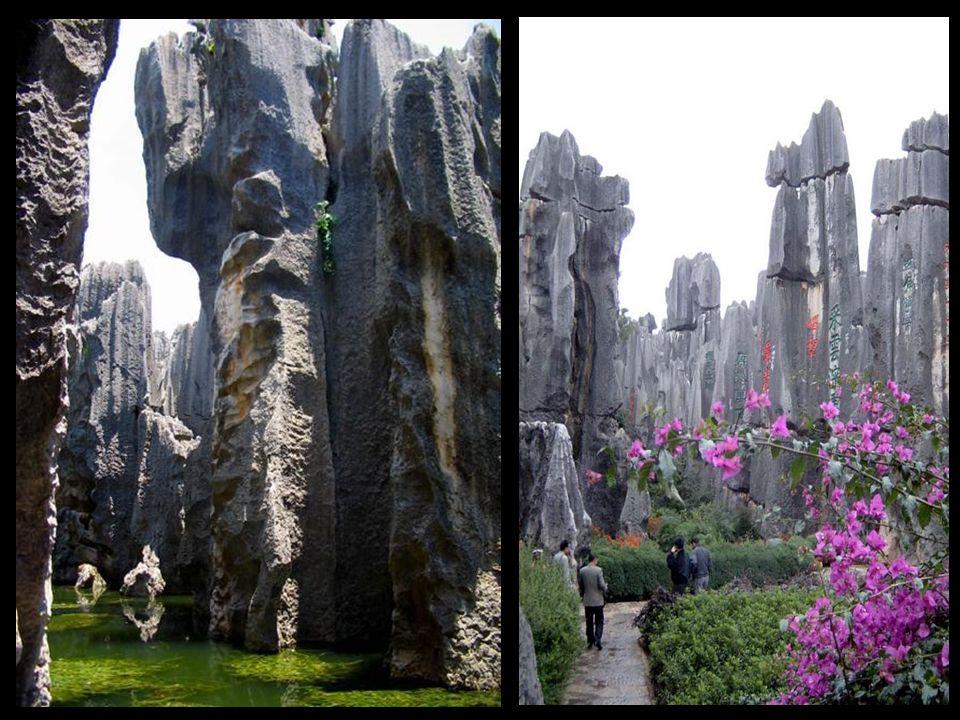 El Bosque de Piedra de Shilin está ubicado en la provincia china de Yunnán. Der Shilin Steinwald liegt in der chinesischen Provinz Yunnan. Der Shilin