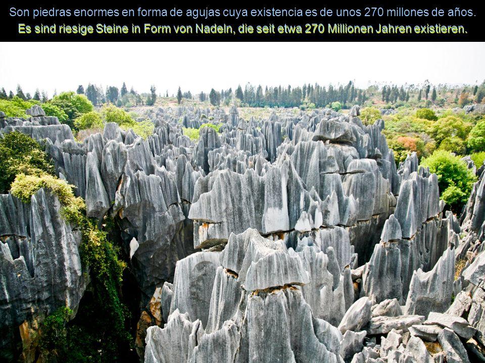 Son piedras enormes en forma de agujas cuya existencia es de unos 270 millones de años.