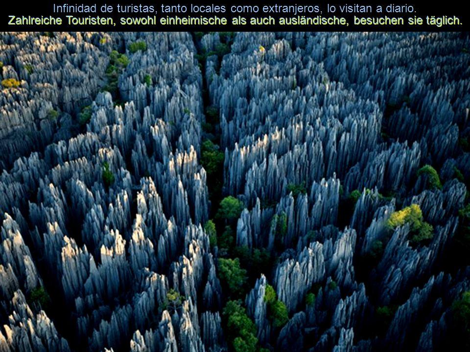 Son piedras enormes en forma de agujas cuya existencia es de unos 270 millones de años. Es sind riesige Steine in Form von Nadeln, die seit etwa 270 M