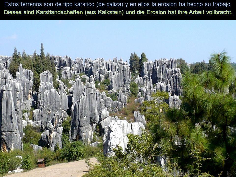 Infinidad de turistas, tanto locales como extranjeros, lo visitan a diario. Zahlreiche Touristen, sowohl einheimische als auch ausländische, besuchen