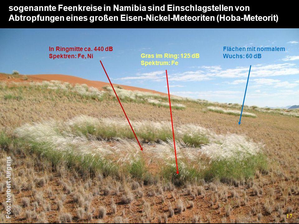 sogenannte Feenkreise in Namibia sind Einschlagstellen von Abtropfungen eines großen Eisen-Nickel-Meteoriten (Hoba-Meteorit) Foto: Norbert Jürgens In