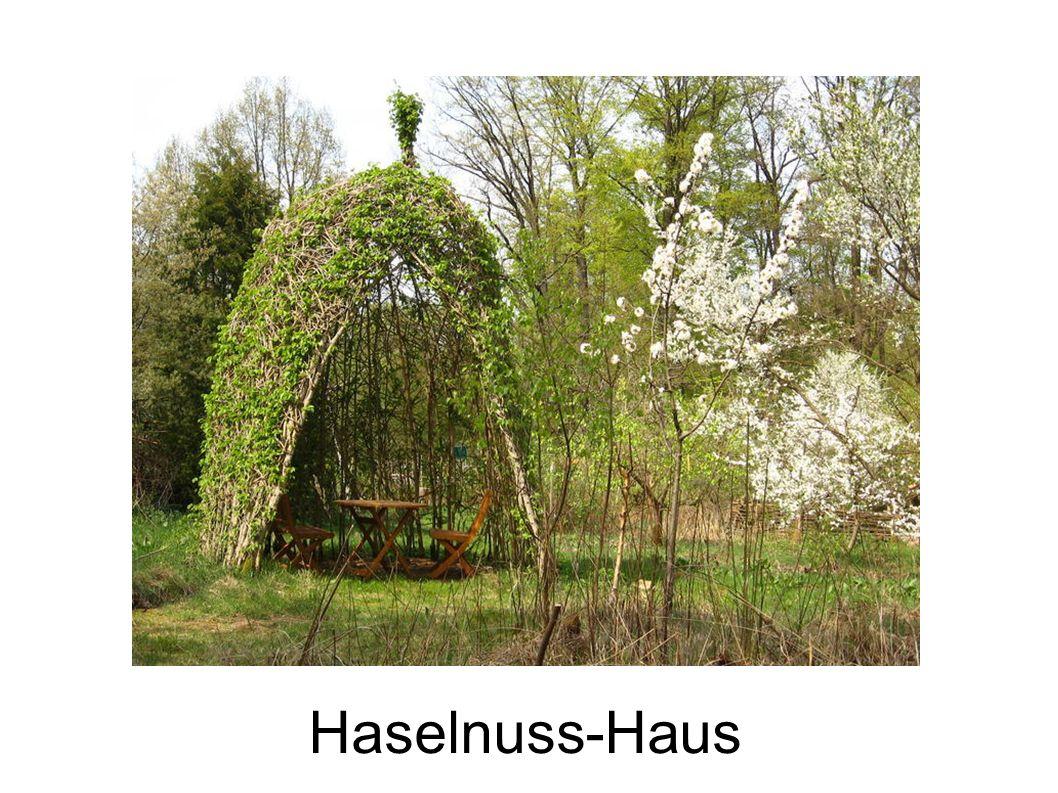 Haselnuss-Haus
