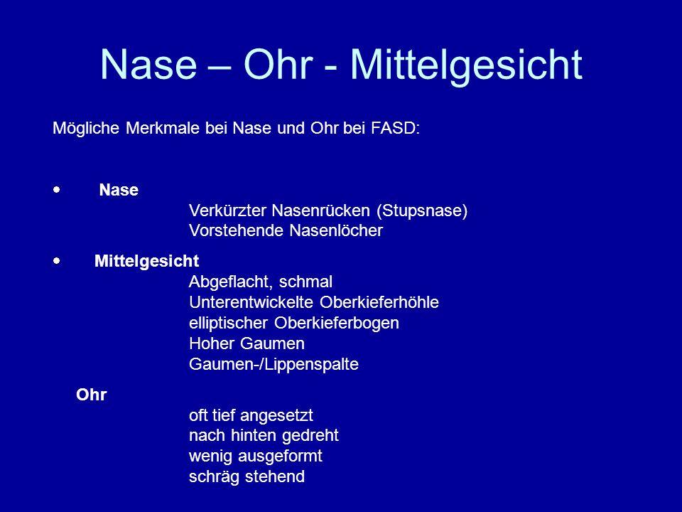 Nase – Ohr - Mittelgesicht Mögliche Merkmale bei Nase und Ohr bei FASD: Nase Verkürzter Nasenrücken (Stupsnase) Vorstehende Nasenlöcher Mittelgesicht