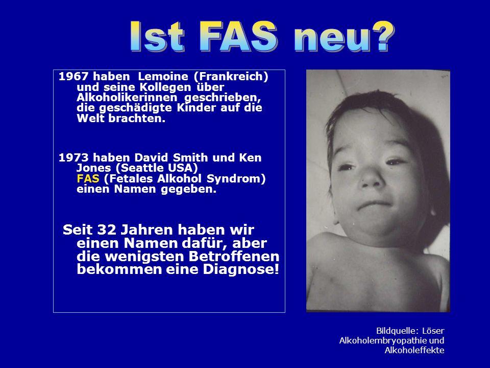 Bei Kindern und Jugendlichen mit FAS / FAE / intrauteriner Alkoholexposition können auf jedem der drei Schritte der Informationsverarbeitung Störungen stattfinden.
