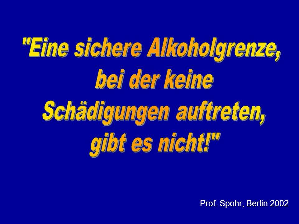 Prof. Spohr, Berlin 2002