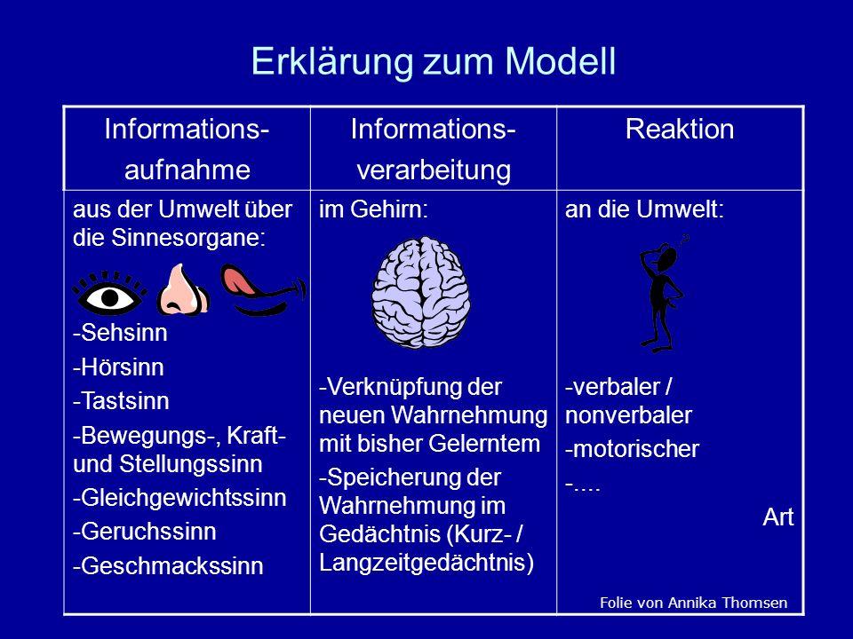 Erklärung zum Modell Informations- aufnahme Informations- verarbeitung Reaktion aus der Umwelt über die Sinnesorgane: -Sehsinn -Hörsinn -Tastsinn -Bew