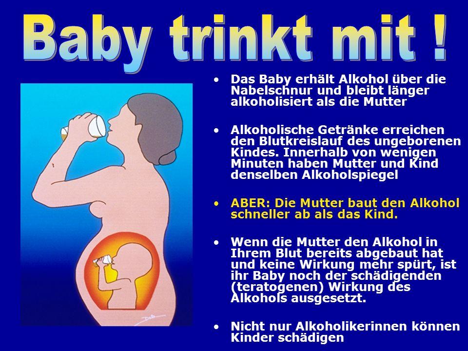 Das Baby erhält Alkohol über die Nabelschnur und bleibt länger alkoholisiert als die Mutter Alkoholische Getränke erreichen den Blutkreislauf des unge