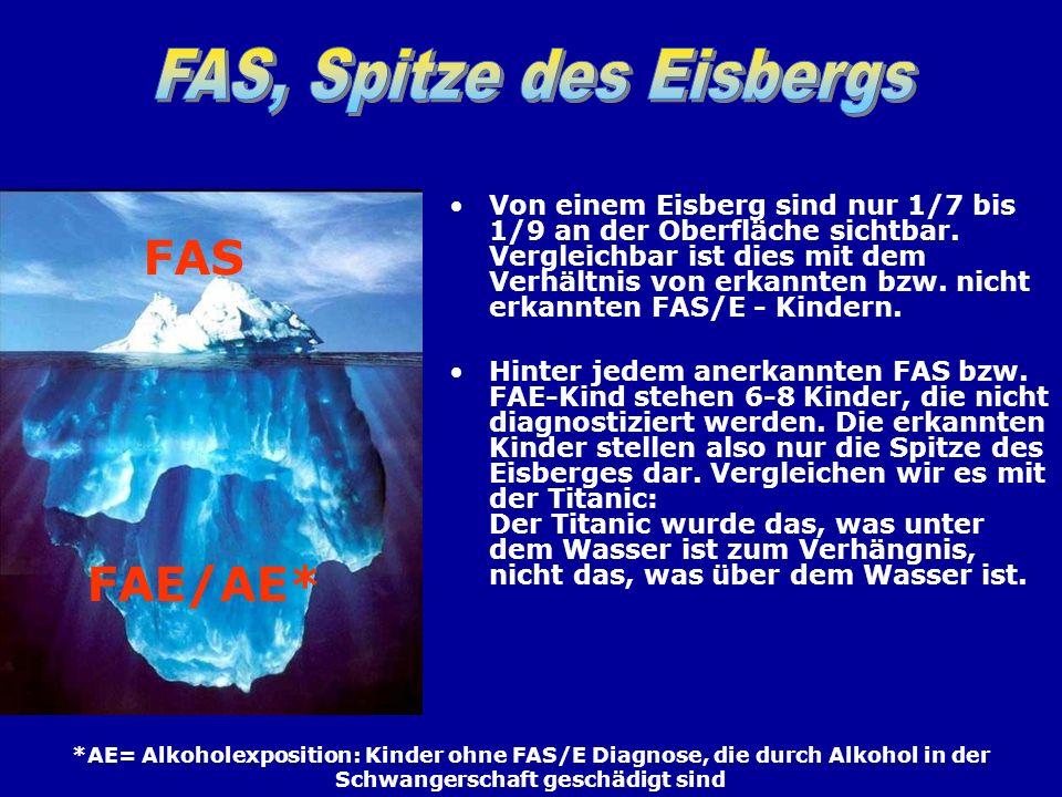 Von einem Eisberg sind nur 1/7 bis 1/9 an der Oberfläche sichtbar. Vergleichbar ist dies mit dem Verhältnis von erkannten bzw. nicht erkannten FAS/E -