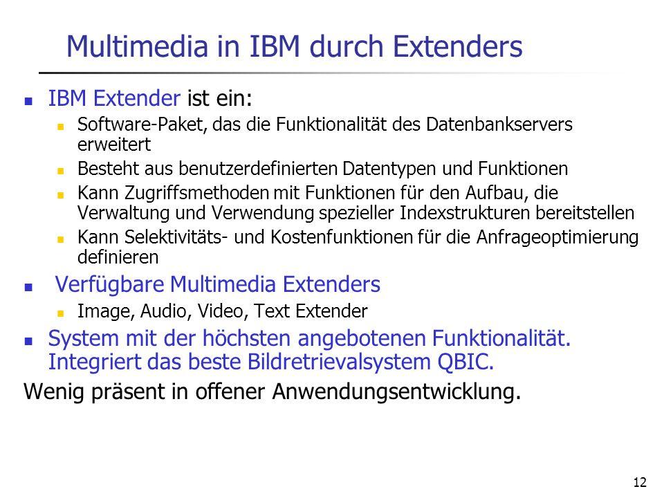 12 Multimedia in IBM durch Extenders IBM Extender ist ein: Software-Paket, das die Funktionalität des Datenbankservers erweitert Besteht aus benutzerd