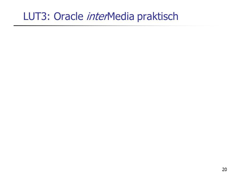 20 LUT3: Oracle interMedia praktisch
