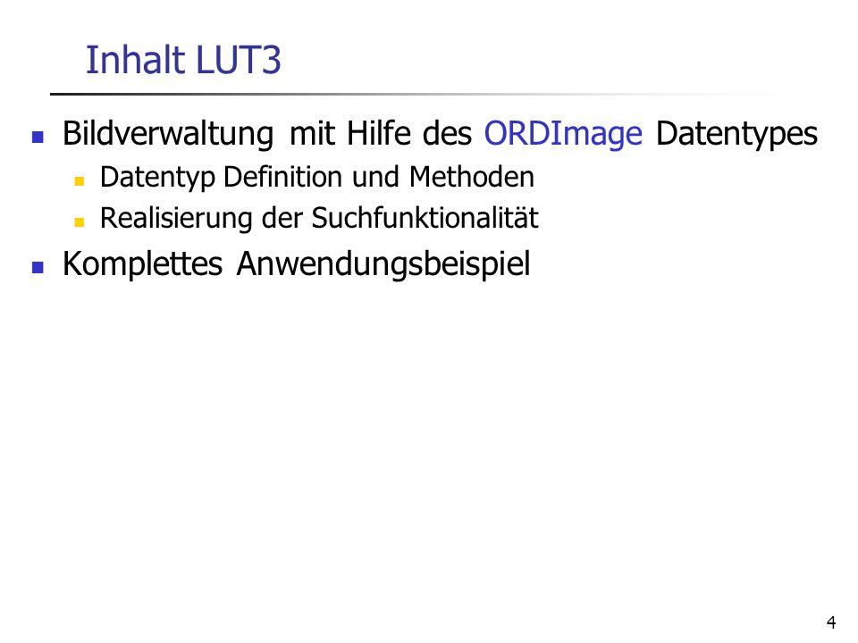 4 Inhalt LUT3 Bildverwaltung mit Hilfe des ORDImage Datentypes Datentyp Definition und Methoden Realisierung der Suchfunktionalität Komplettes Anwendu
