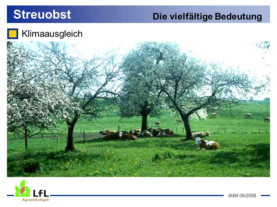IAB4 09/2006 Klimaausgleich Streuobst Die vielfältige Bedeutung