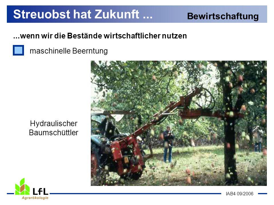 IAB4 09/2006...wenn wir die Bestände wirtschaftlicher nutzen Streuobst hat Zukunft... Bewirtschaftung Hydraulischer Baumschüttler maschinelle Beerntun