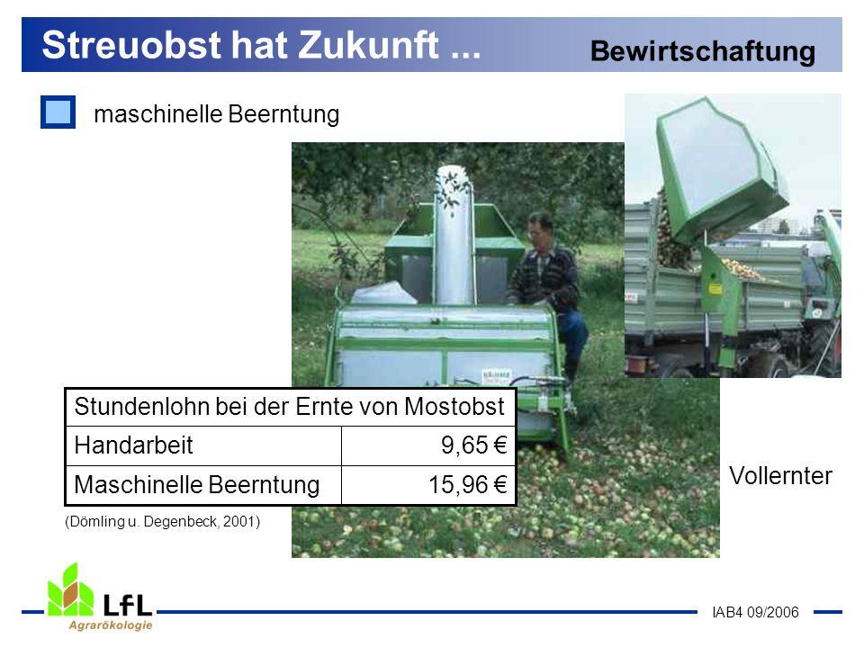 IAB4 09/2006 Vollernter maschinelle Beerntung Streuobst hat Zukunft... Bewirtschaftung 15,96 Maschinelle Beerntung 9,65 Handarbeit Stundenlohn bei der