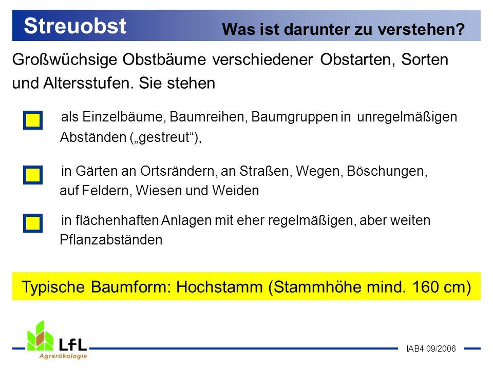 IAB4 09/2006 Streuobst Die vielfältige Bedeutung Rohstoff mit hoher Qualität für...