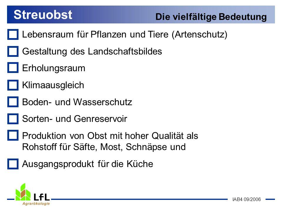 IAB4 09/2006 Lebensraum für Pflanzen und Tiere (Artenschutz) Streuobst Die vielfältige Bedeutung Schwalbenschwanz Steinkauz Streuobstbestände sind Lebensraum für ca.