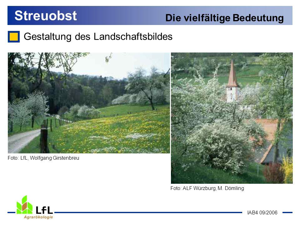 IAB4 09/2006 Streuobst Die vielfältige Bedeutung Gestaltung des Landschaftsbildes Foto: ALF Würzburg, M. Dömling Foto: LfL, Wolfgang Girstenbreu