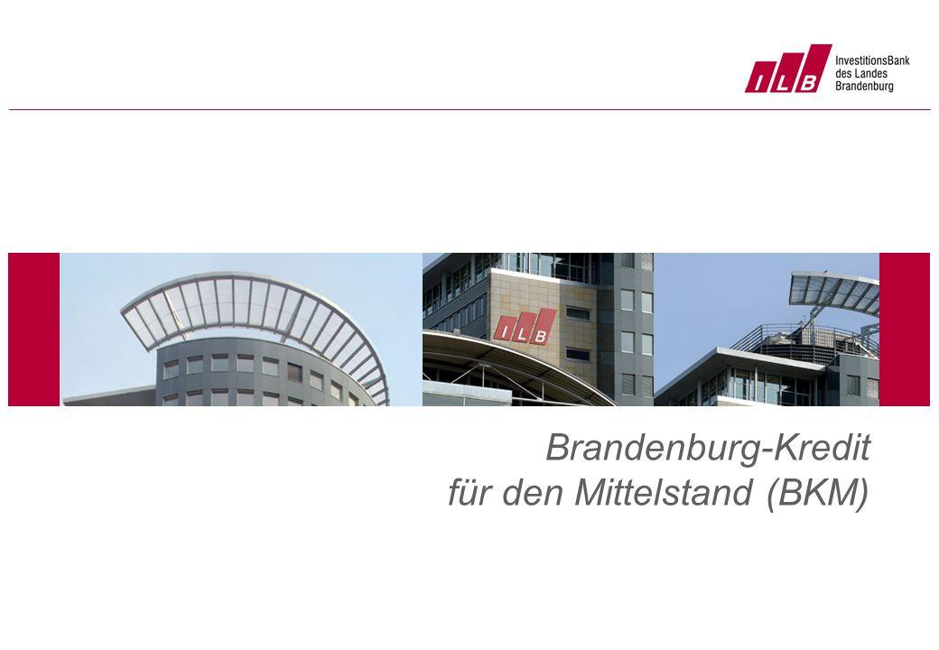 Platz für Foto Brandenburg-Kredit für den Mittelstand (BKM)