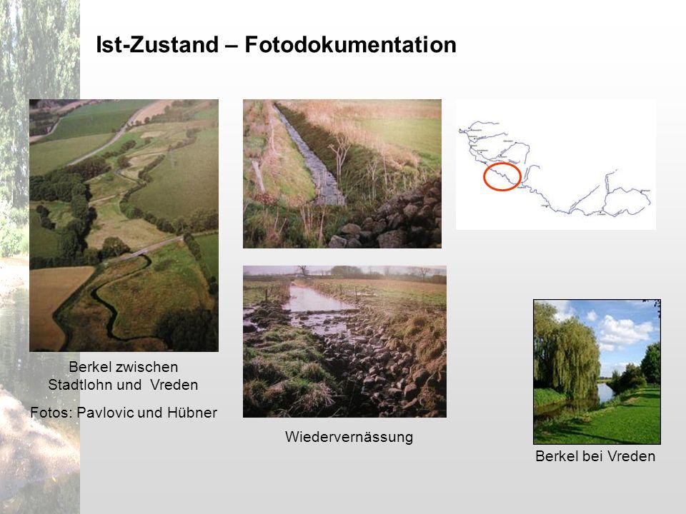 Berkel bei Vreden Berkel zwischen Stadtlohn und Vreden Fotos: Pavlovic und Hübner Wiedervernässung Ist-Zustand – Fotodokumentation
