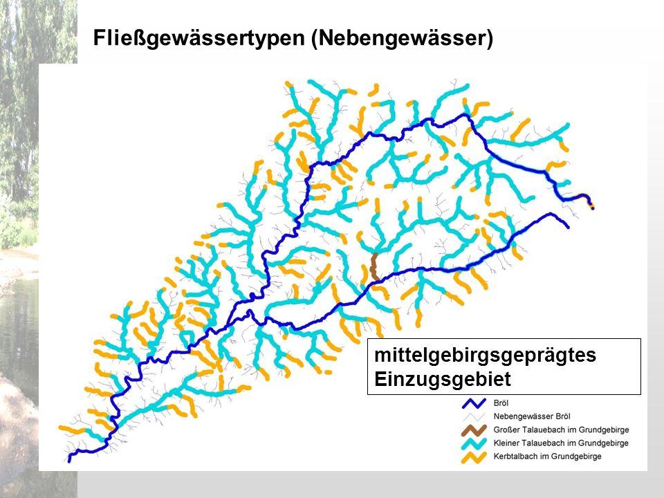 mittelgebirgsgeprägtes Einzugsgebiet Fließgewässertypen (Nebengewässer)