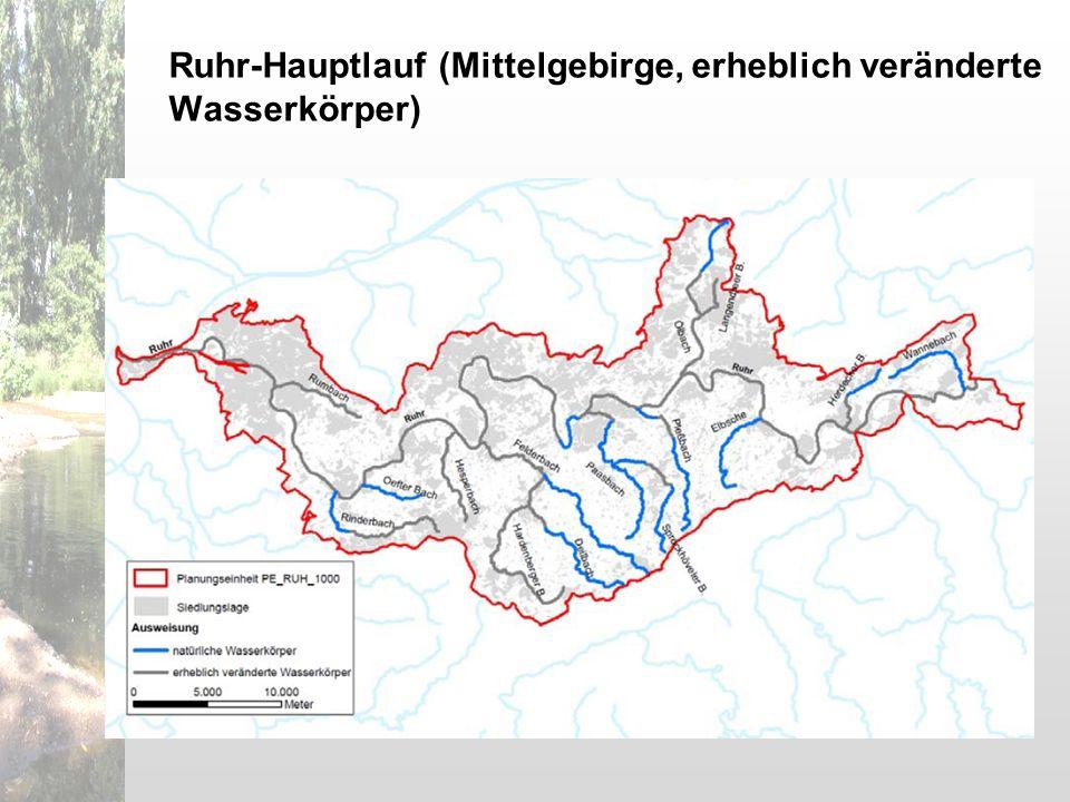 Ruhr-Hauptlauf (Mittelgebirge, erheblich veränderte Wasserkörper)