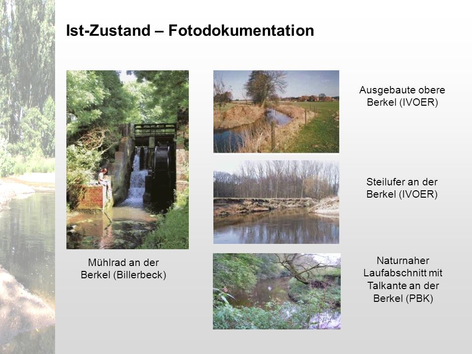 Mühlrad an der Berkel (Billerbeck) Ausgebaute obere Berkel (IVOER) Steilufer an der Berkel (IVOER) Ist-Zustand – Fotodokumentation Naturnaher Laufabsc