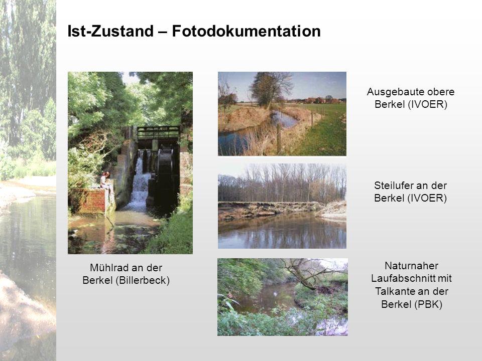 Ist-Zustand – Fotodokumentation