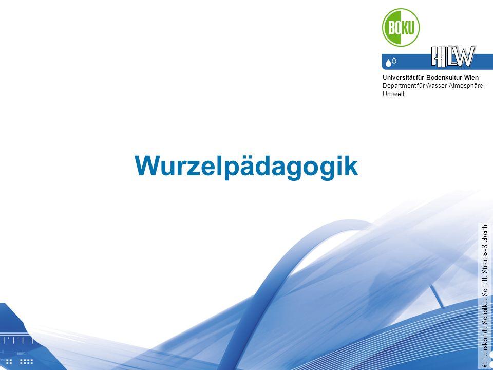 Universität für Bodenkultur Wien Department für Wasser-Atmosphäre- Umwelt Wurzelpädagogik © Loiskandl, Schalko, Scholl, Strauss-Sieberth