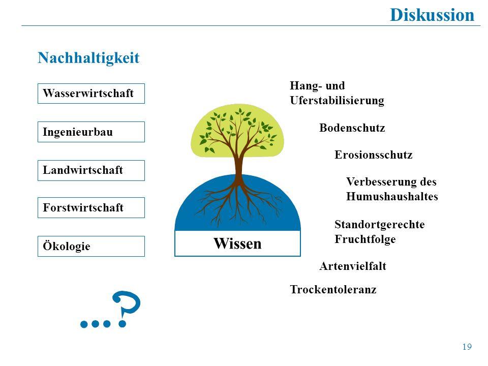 19 Diskussion Hang- und Uferstabilisierung Trockentoleranz Standortgerechte Fruchtfolge Verbesserung des Humushaushaltes Erosionsschutz Artenvielfalt