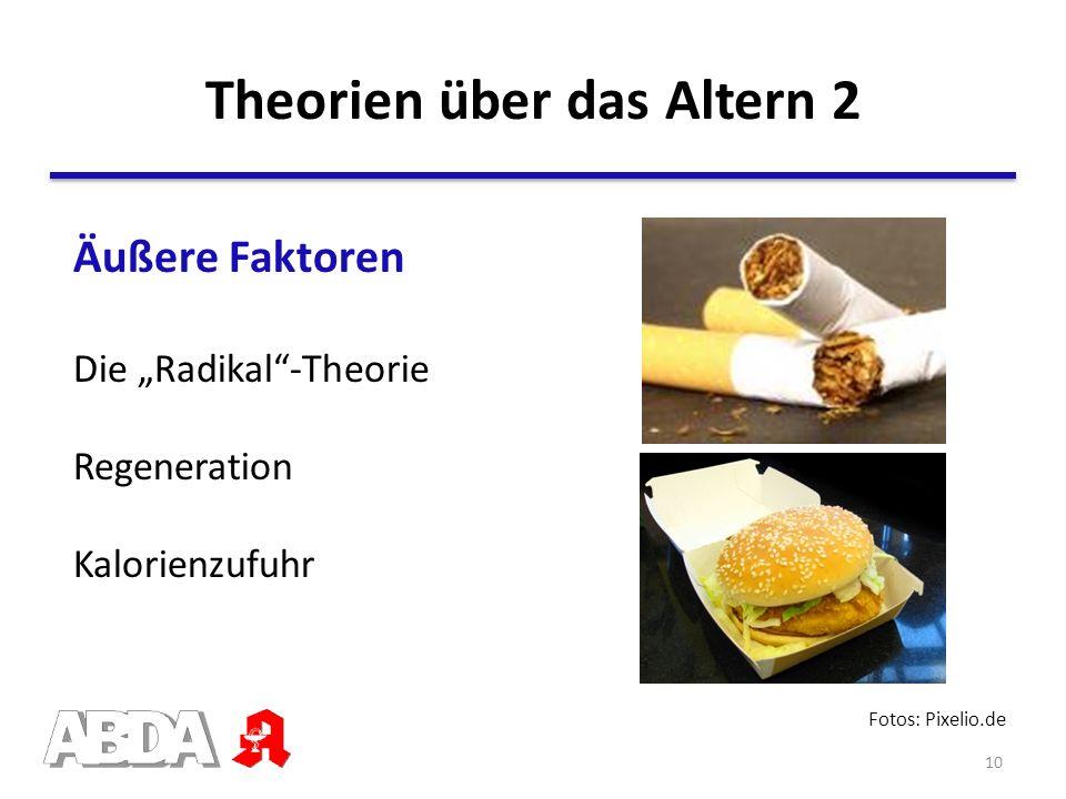 Theorien über das Altern 2 Fotos: Pixelio.de Äußere Faktoren Die Radikal-Theorie Kalorienzufuhr Regeneration 10