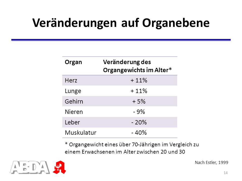 Nach Estler, 1999 OrganVeränderung des Organgewichts im Alter* Herz+ 11% Lunge+ 11% Gehirn+ 5% Nieren- 9% Leber- 20% Muskulatur- 40% * Organgewicht ei