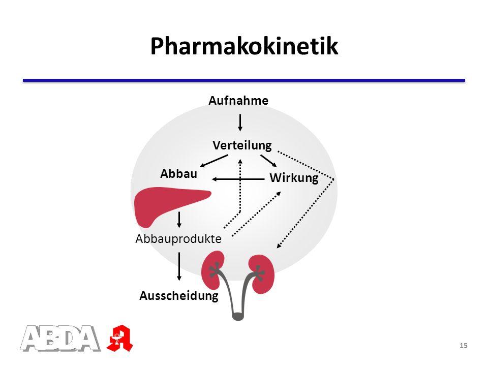 Abbauprodukte Wirkung Abbau Ausscheidung Verteilung Aufnahme Leber Pharmakokinetik 15