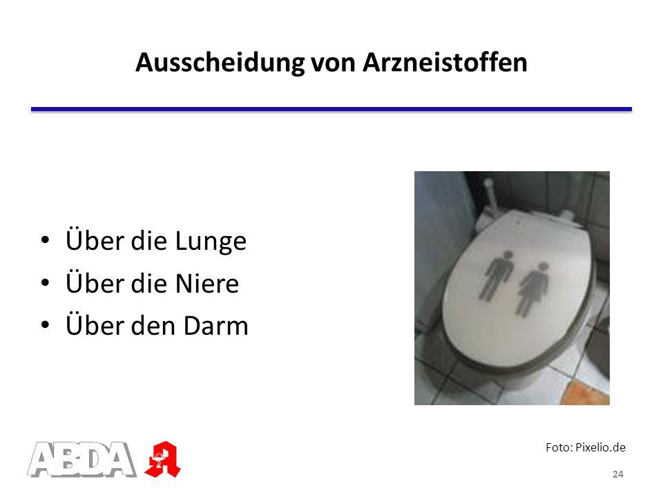 Über die Lunge Über die Niere Über den Darm Ausscheidung von Arzneistoffen Foto: Pixelio.de 24