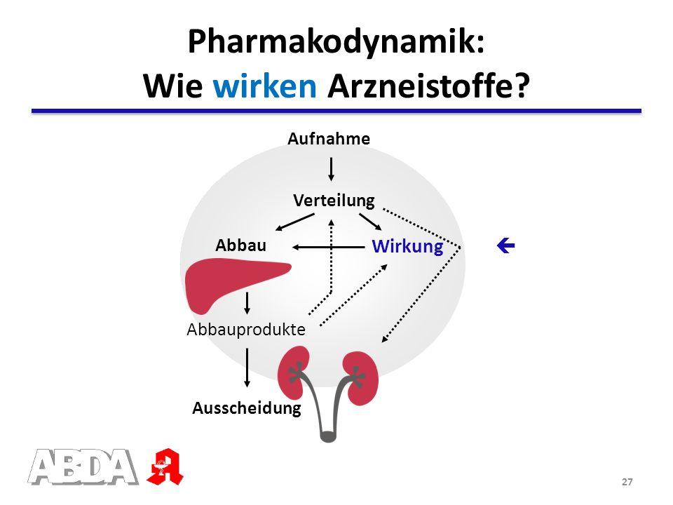 27 Abbauprodukte Wirkung Abbau Ausscheidung Verteilung Aufnahme Leber Pharmakodynamik: Wie wirken Arzneistoffe?