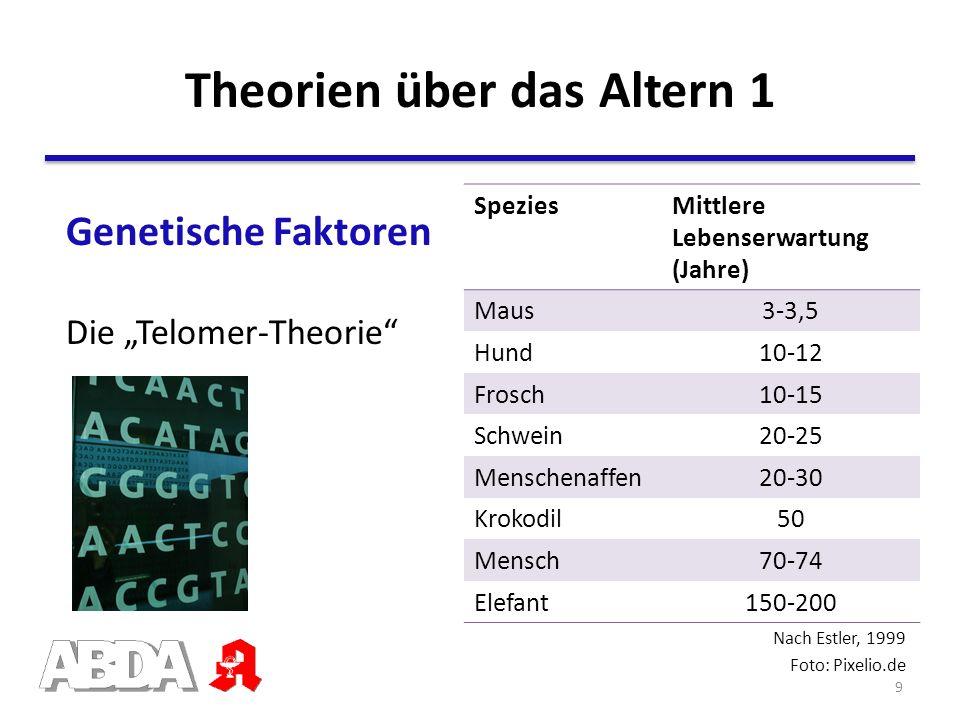 Theorien über das Altern 1 Nach Estler, 1999 Foto: Pixelio.de SpeziesMittlere Lebenserwartung (Jahre) Maus3-3,5 Hund10-12 Frosch10-15 Schwein20-25 Men