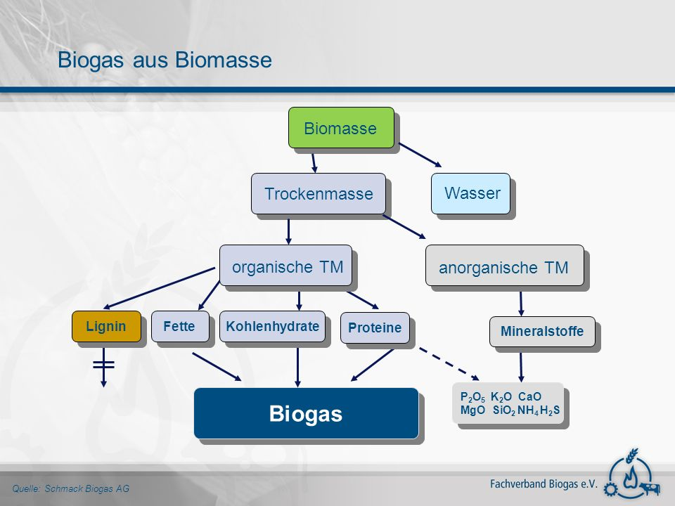 Quelle: Schmack Biogas AG Biogas Biomasse P 2 O 5 K 2 O CaO MgO SiO 2 NH 4 H 2 S P 2 O 5 K 2 O CaO MgO SiO 2 NH 4 H 2 S Lignin Kohlenhydrate Fette Min