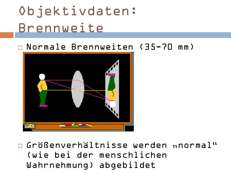 Objektivdaten: Brennweite Normale Brennweiten (35-70 mm) Größenverhältnisse werden normal (wie bei der menschlichen Wahrnehmung) abgebildet