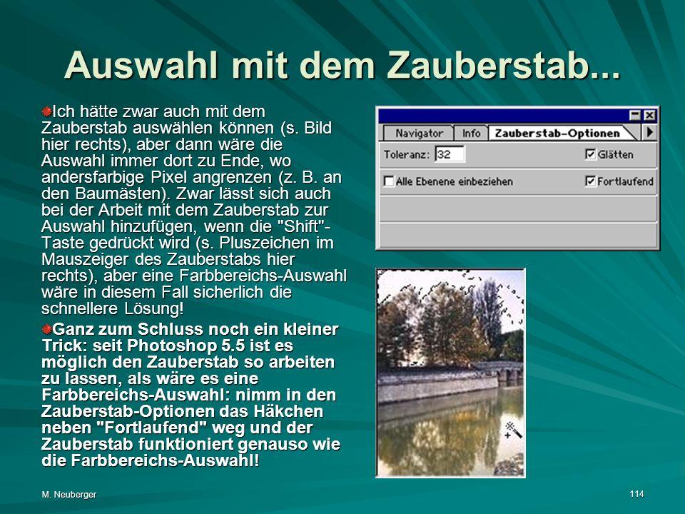 M.Neuberger 114 Auswahl mit dem Zauberstab...
