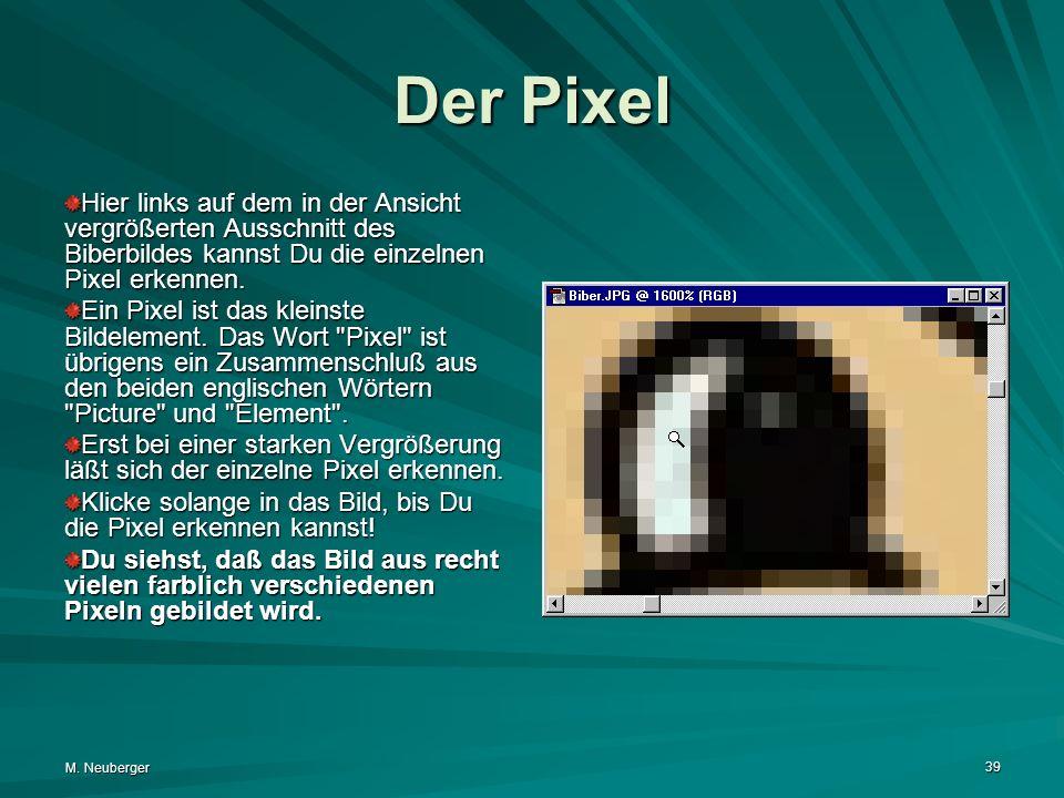 M. Neuberger 39 Der Pixel Hier links auf dem in der Ansicht vergrößerten Ausschnitt des Biberbildes kannst Du die einzelnen Pixel erkennen. Ein Pixel