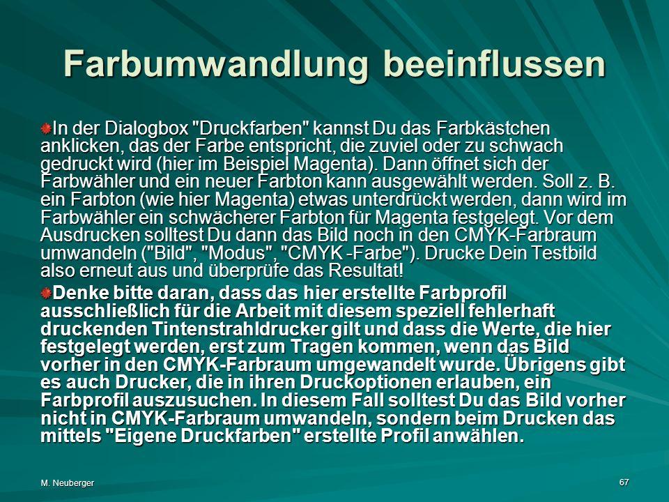 M. Neuberger 67 Farbumwandlung beeinflussen In der Dialogbox