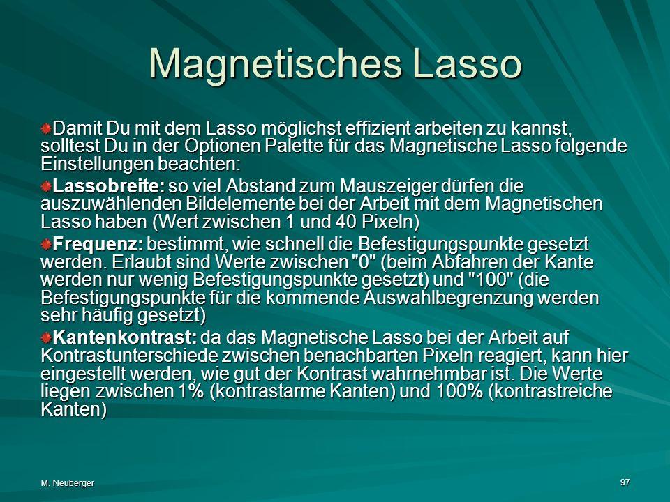 M. Neuberger 97 Magnetisches Lasso Damit Du mit dem Lasso möglichst effizient arbeiten zu kannst, solltest Du in der Optionen Palette für das Magnetis