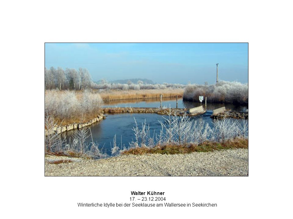 Walter Kühner 17. – 23.12.2004 Winterliche Idylle bei der Seeklause am Wallersee in Seekirchen