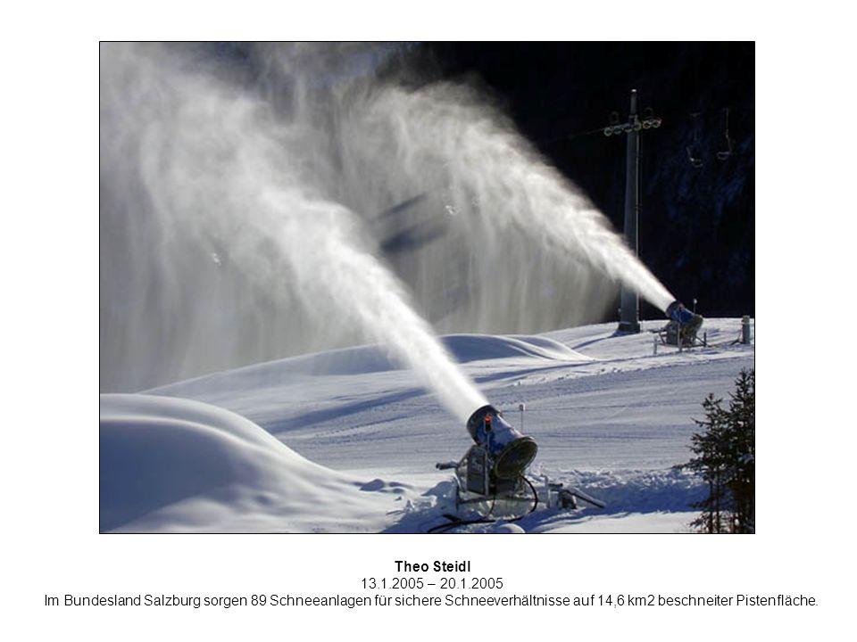 Theo Steidl 13.1.2005 – 20.1.2005 Im Bundesland Salzburg sorgen 89 Schneeanlagen für sichere Schneeverhältnisse auf 14,6 km2 beschneiter Pistenfläche.