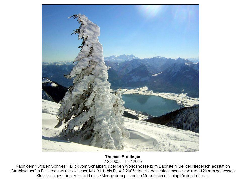 Thomas Prodinger 7.2.2005 – 18.2.2005 Nach dem Großen Schnee - Blick vom Schafberg über den Wolfgangsee zum Dachstein.