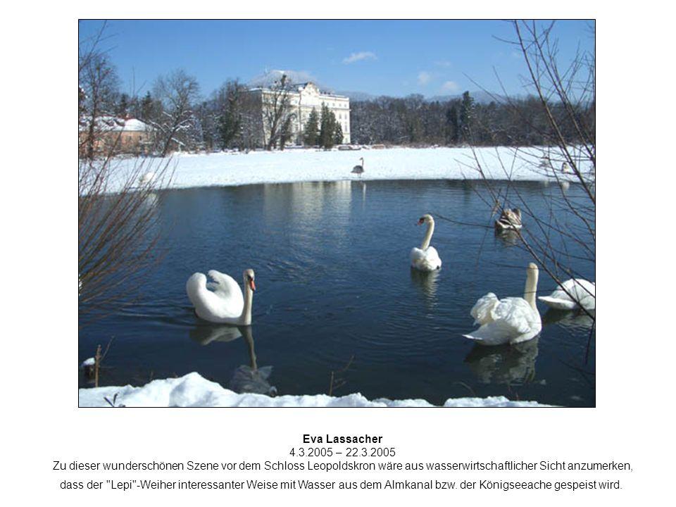 Eva Lassacher 4.3.2005 – 22.3.2005 Zu dieser wunderschönen Szene vor dem Schloss Leopoldskron wäre aus wasserwirtschaftlicher Sicht anzumerken, dass der Lepi -Weiher interessanter Weise mit Wasser aus dem Almkanal bzw.