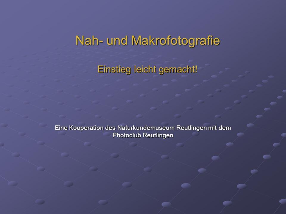 Nah- und Makrofotografie Einstieg leicht gemacht! Eine Kooperation des Naturkundemuseum Reutlingen mit dem Photoclub Reutlingen